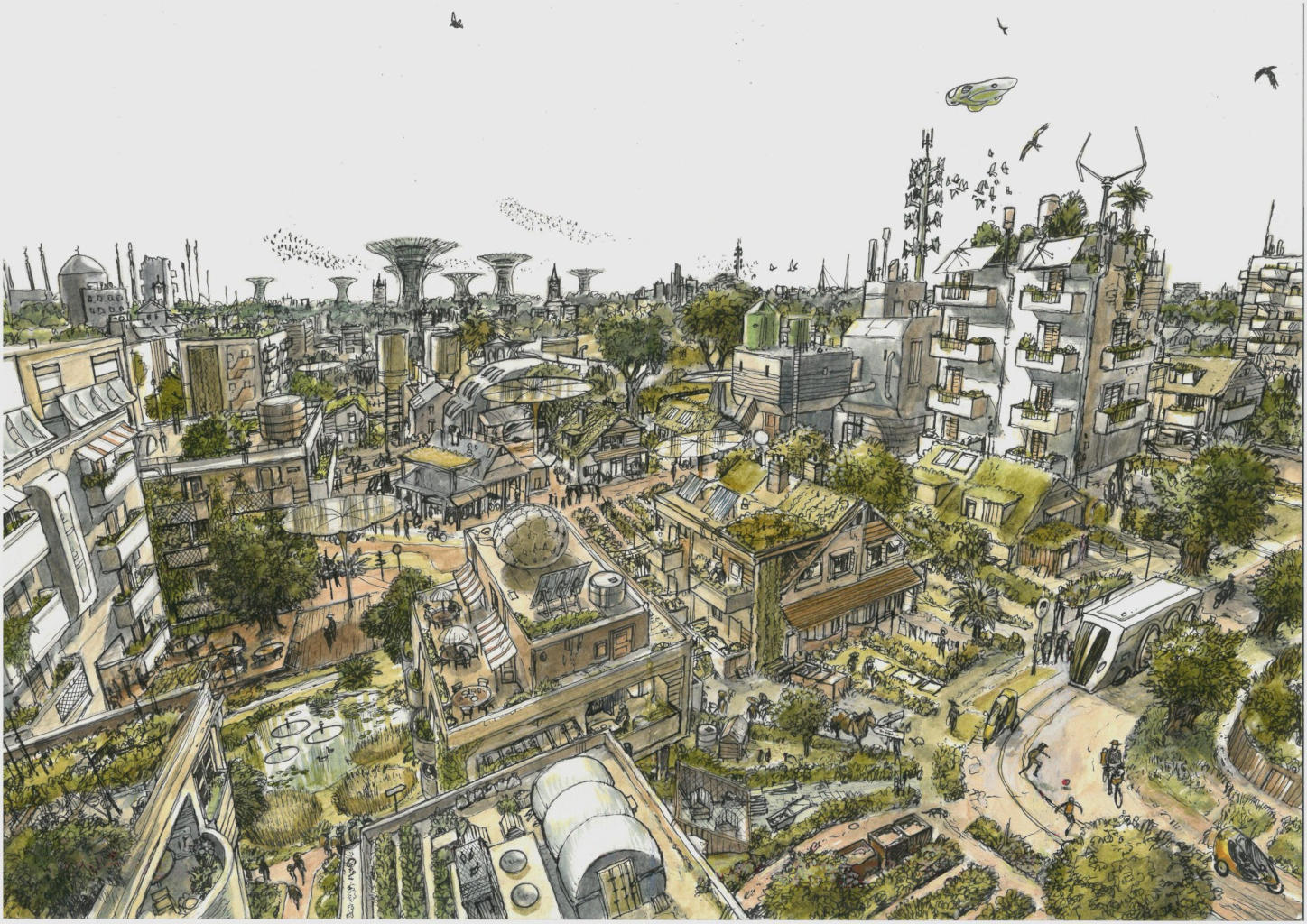 Sustainable Cities by James McKay